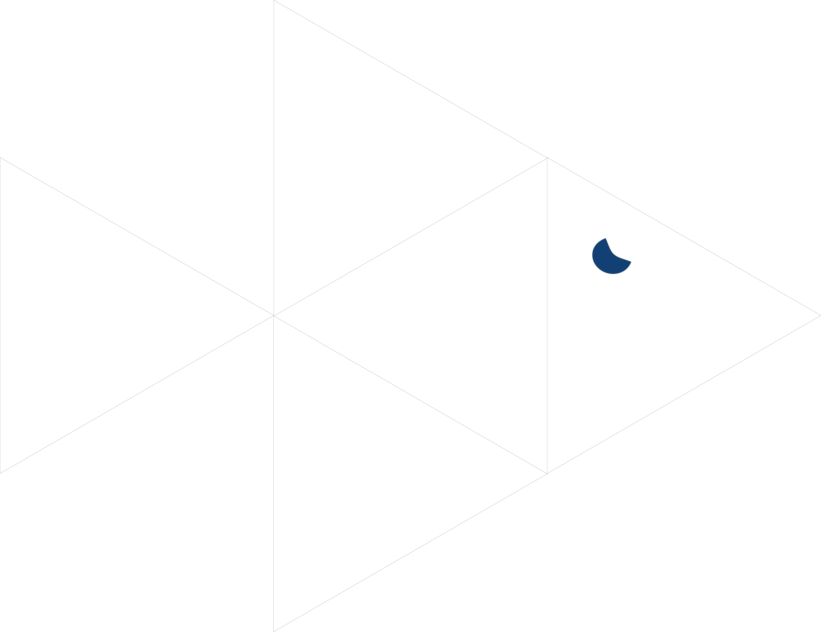 Praxton Consulting Logo